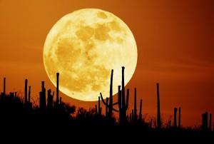 Firey Full Moon