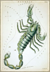 Scorpius as depicted in Urania's Mirror, a set of constellation cards published in London c.1825.